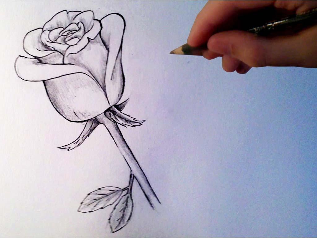 Asal lorient section de loisirs de dessin et de peinture - Dessin peinture facile ...