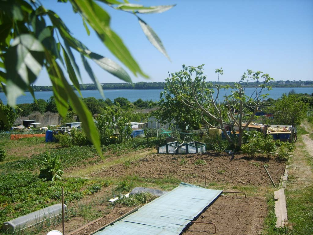 Asal lorient section de loisirs de jardins familiaux for Jardin familiaux